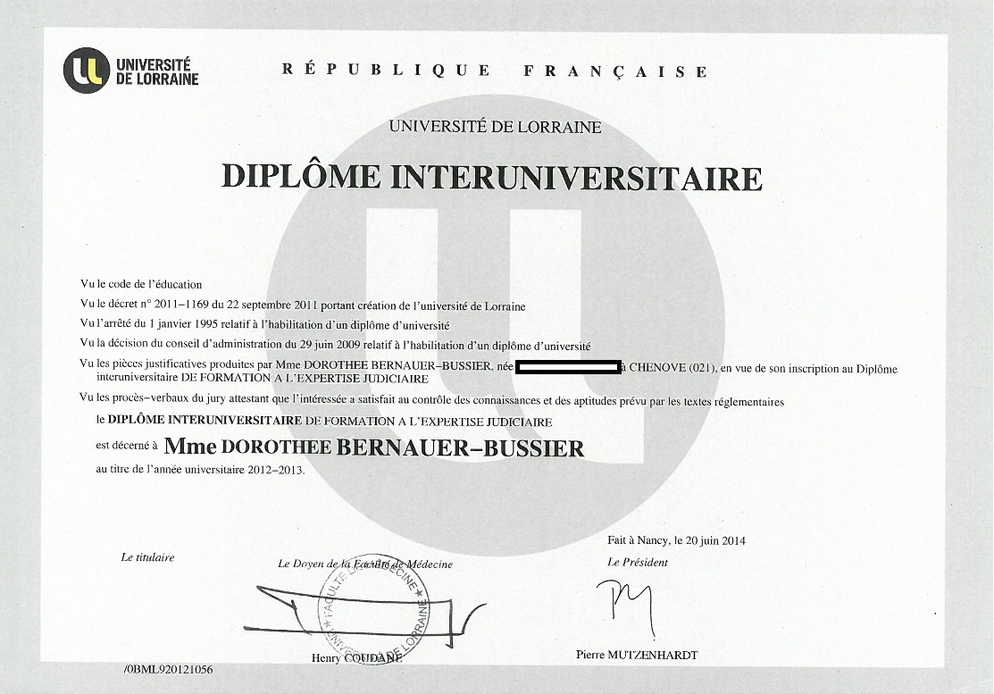 diplome universitaire nancy